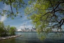 Toronto Spring